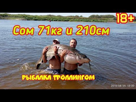 Ловля СОМа.Рыбалка  троллингом.Трофейный СОМ 71кг и 210см. Река Припять.