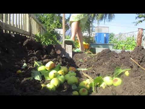 Утилизация травы на садовом участке. Легко и быстро.