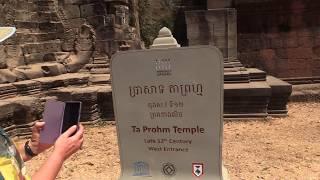 ХРАМ ТА ПРОМ — ХРАМ АНДЖЕЛИНЫ ДЖОЛИ (Angelina Jolie. The Ta Prohm Тemple. Angkor. Cambodia) (1)
