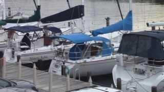 Sailing Emporium Slip Holders Party