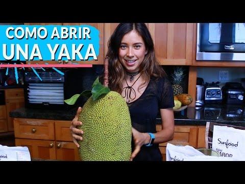 COMO ABRIR Y COMER UNA YAKA+TACOS DE YAKA