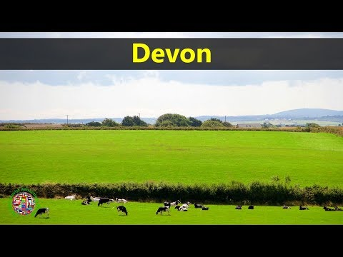 Best Tourist Attractions Places To Travel In UK-England | Devon Destination Spot