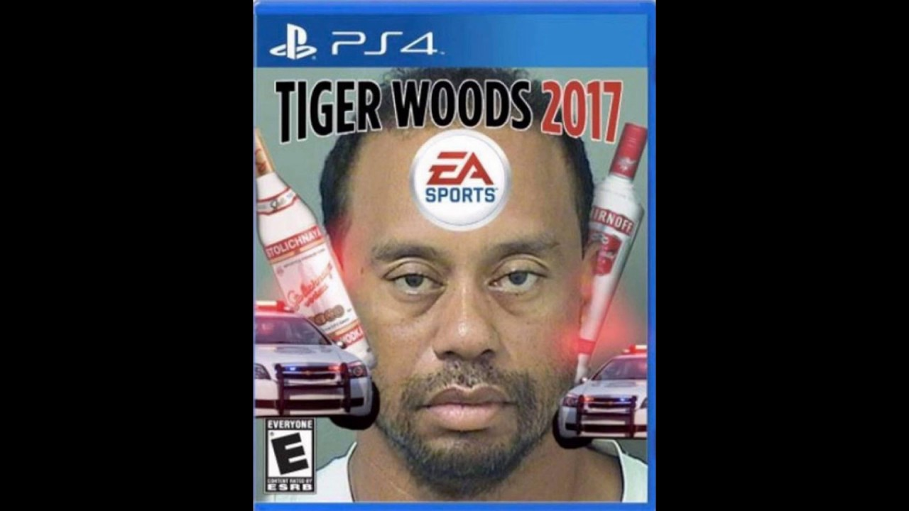 maxresdefault the best memes of tiger woods dui 2017 (less than 1 minute