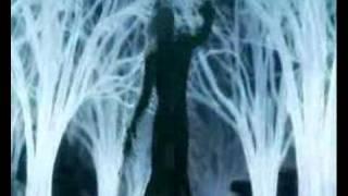 Final Fantasy VII - Evil Island -