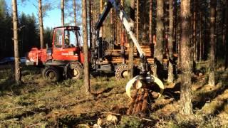 SortimentsGripen III. Färila, Hälsingland