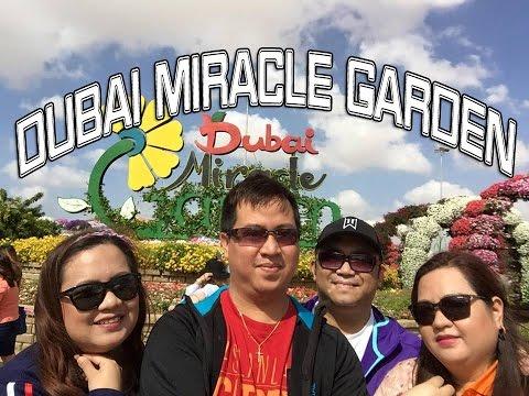 Dubai Miracle Garden   Judden ► (12-FEB-2016)