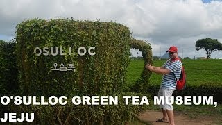 O'sulloc Green Tea Museum, Jeju