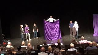 Off-Broadway Illusion Show - Metamorphosis!