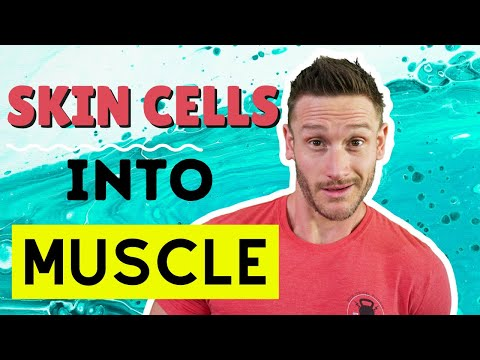 Do You Build Muscle DURING a Fast? Protein Synthesis & Fasting