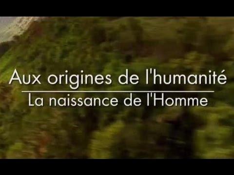 Aux origines de l'humanité - La naissance de l'homme [2/3]