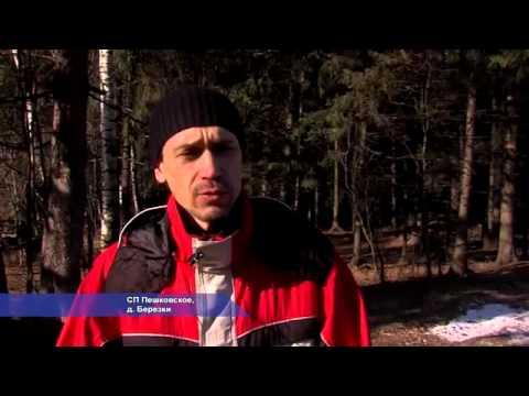 В Солнечногорье многодетным семьям выделили 44 земельных участка