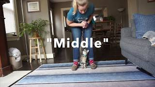 How to teach 'Middle'