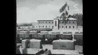 Etiopia. La nuova Addis Abeba. Istituto Luce.