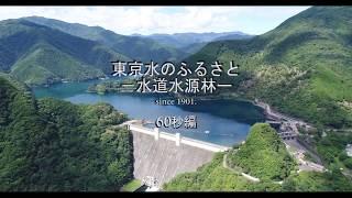 東京水のふるさと―水道水源林― (60秒編)