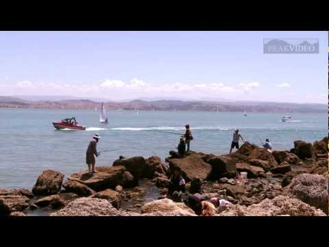 Ahuriri, Napier. Video Montage including jumping fish!