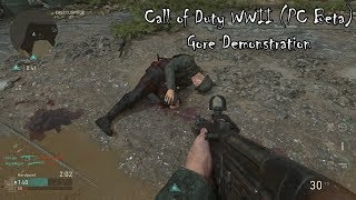 Call of Duty WWII (PC Beta) Gore Demonstration
