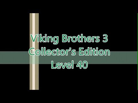 Viking Brothers 3 Level 40 |