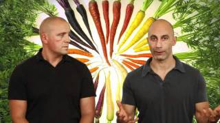 Episode 174 - A Carrot a Day Keeps the Doctor Away - Healthy