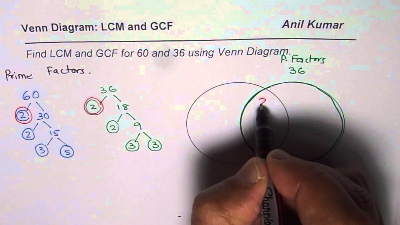 find lcm and gcf with venn diagram for 60 and 36