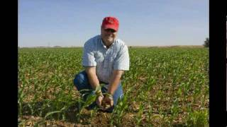 Texas Corn on Drip Irrigation - Part 1