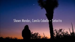 |Shawn Mandes - Senorita (Lyrics)|