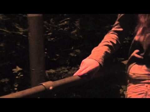 Jason Mraz Coyotes music video FINAL