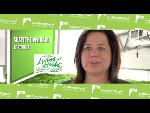 andnowuknow north shore living herbs behind the greens youtube