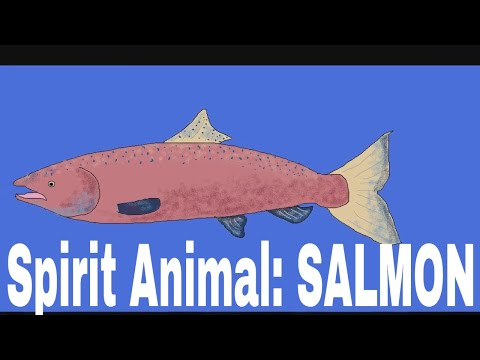 spirit-animal:-salmon