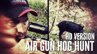Hog Hunt With Airgun HD - GAMO Hunter Extreme .25 caliber