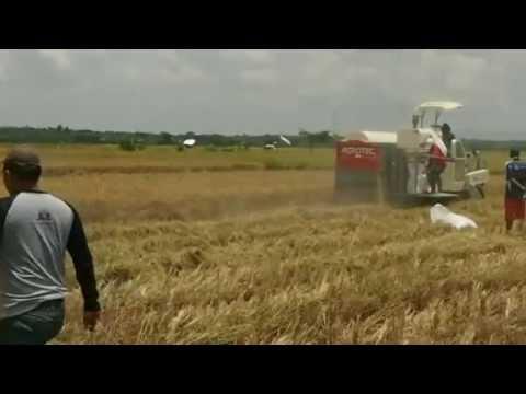 Alat Panen Padi ( Agrotec )