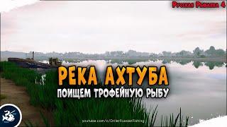 Русская Рыбалка 4 стрим на реке Ахтуба • Driler - Рюкзак рыболова