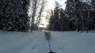 белые дороги(Фото http://fotki.yandex.ru/users/yri5178/ http://fotki.yandex.ru/users/den-lenin/ а также другие мужественные фотографы... Видео Belyipes Данное..., 2013-01-07T05:40:19.000Z)