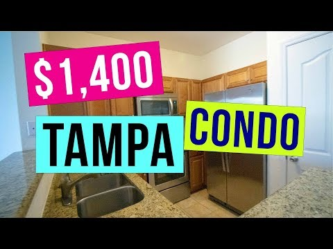 Beach houses to rent in tampa fl