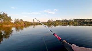 Рыбалка на Щуку в Августе на Спиннинг. Воблер, Поппер, Джиг, Что сьест щука?!