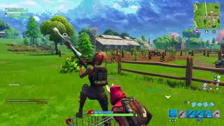 FORTNITE - the whole game hidden and at the end real victory