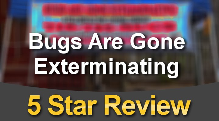 Bugs Are Gone Exterminating Reviews Brooklyn Exterminator 718 735