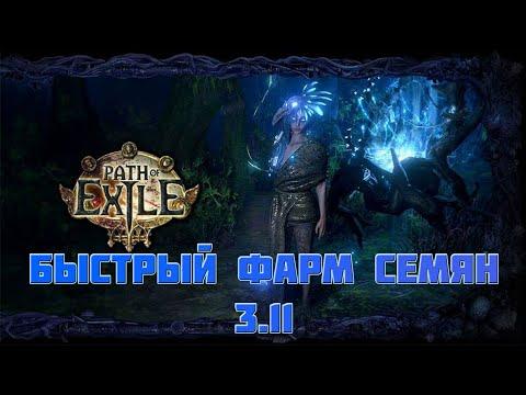 БЫСТРЫЙ ФАРМ СЕМЕЧЕК [Path of Exile] 3.11