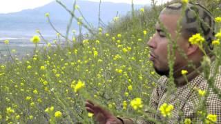 Camaleon Landaez  Tira Pa Arriba Street Video