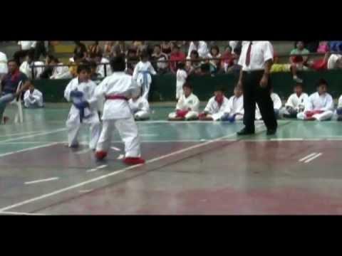 Campeonato de Karate Open Internacional Trujillo - Peru 2011 (Juan Torres López)