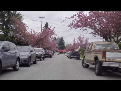 Burnaby British Columbia Canada - Driving in the City's South Area - Vancouver Suburb