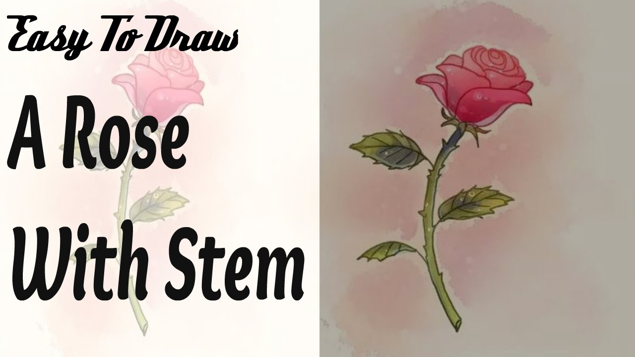 How To Draw A Rose Step By Step For Beginners : Easy To Draw A Rose With  Stem