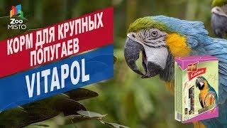 Корм для крупных попугаев Vitapol  | Обзор корм для крупных попугаев Vitapol