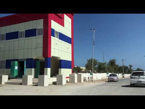 Dalxiiski Berbera Somaliland 2019