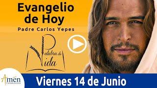 Evangelio de Hoy Viernes 14 de Junio de 2019 l Padre Carlos Yepes