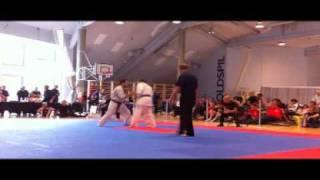 Kyokushin Karate Danish Open 2011 Finals