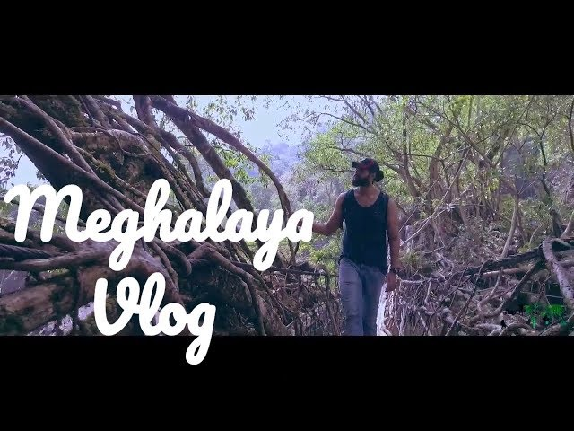 Meghalaya | Travel Vlog | Travel India | Meghalaya Tourism | Northeast India | Scotland of the East