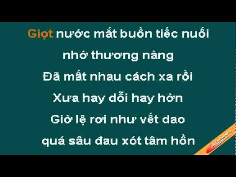 Nuoi Tiec Karaoke - Dam Vinh Hung - CaoCuongPro