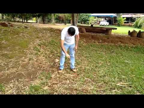 Radiestesia com Luiz Alves -Poços Artesianos  3