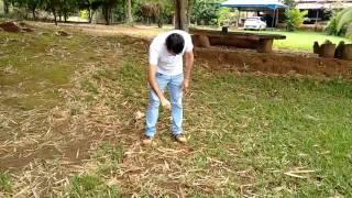 Baixar Radiestesia com Luiz Alves -Poços Artesianos Parte 3