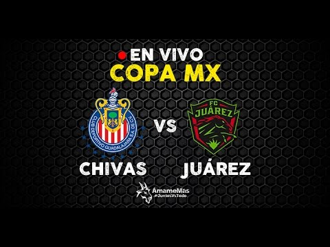 Image Result For Vivo Vs En Vivo In